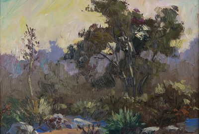 9-robert-sherrill-eaton-canyon-flora